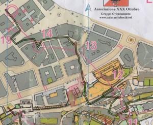 Orienteering-Trieste-2014-04