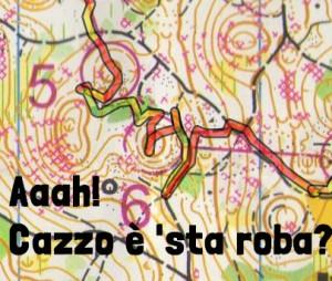 Orienteering-Rasica-Slovenia-WB-2014