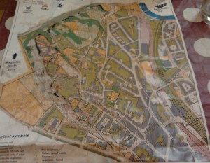 Stirling-orienteering-back