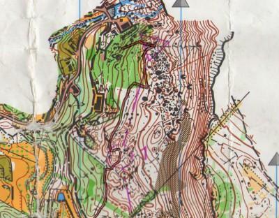 Orienteering-Grivce-Lipica-Open-2015-01