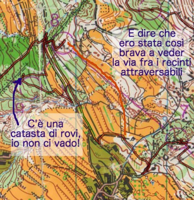 Orienteering-Grivce-Lipica-Open-2015-04